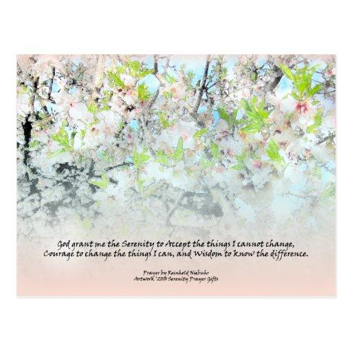 Flores del manzano del rezo de la serenidad postal