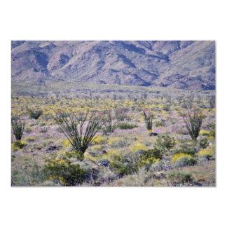 """Flores del Ocotillo y del desierto en flores de la Invitación 5"""" X 7"""""""
