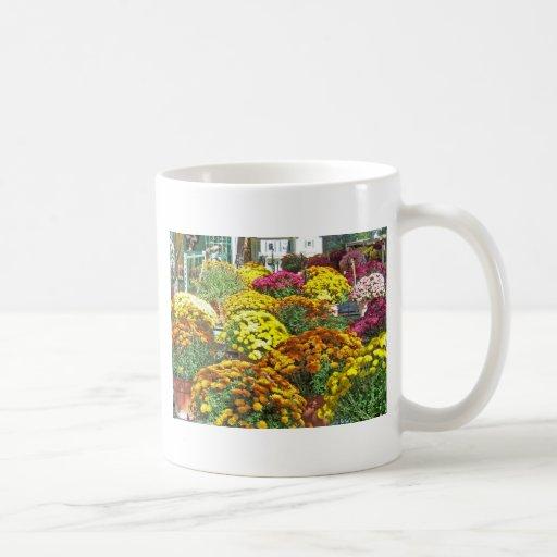 Flores del otoño en potes taza básica blanca