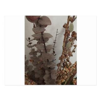 flores del palillo tarjetas postales