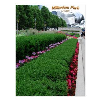 Flores del parque del milenio tarjeta postal