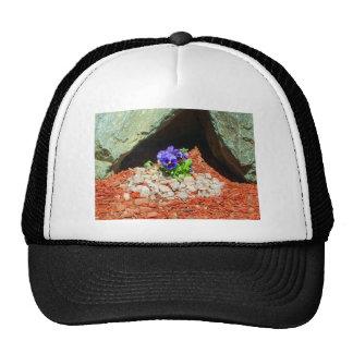 Flores del pensamiento en púrpura gorras de camionero