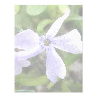 Flores del Phlox del arrastramiento Membretes Personalizados