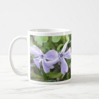 Flores del Phlox del arrastramiento Taza