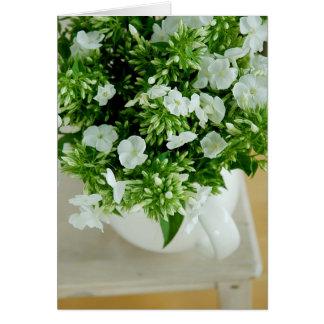 Flores del Phlox Tarjeton
