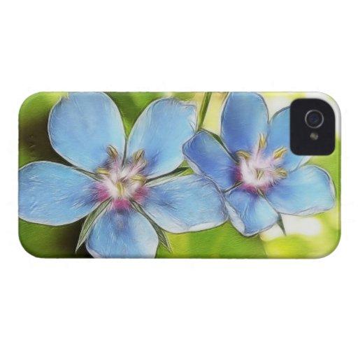 Flores del Pimpernel azul (monelli del Anagallis) iPhone 4 Funda