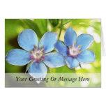 Flores del Pimpernel azul (monelli del Anagallis) Tarjeton