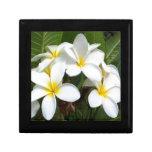 Flores del Plumeria de Hawaii Cajas De Joyas