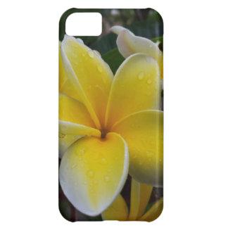 Flores del Plumeria de Hawaii