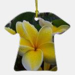 Flores del Plumeria de Hawaii Ornamentos De Reyes