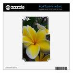 Flores del Plumeria de Hawaii Skins Para iPod Touch 4G