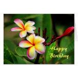 Flores del Plumeria de Maui, cumpleaños Tarjeton