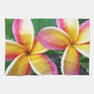 Flores del Plumeria de Maui Hawaii Toallas De Cocina