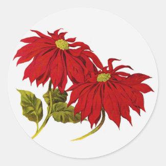 Flores del Poinsettia del navidad Pegatina Redonda