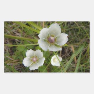 Flores del Riverbank Pegatina Rectangular