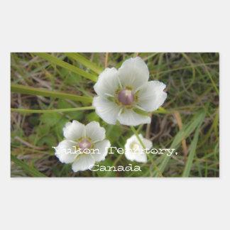 Flores del Riverbank; Recuerdo del territorio del Pegatina Rectangular