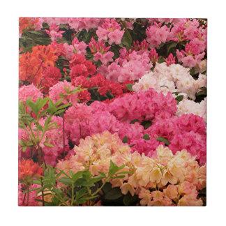 Flores del rododendro azulejo cuadrado pequeño