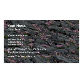 Flores del rojo de las flores salvajes plantillas de tarjetas personales
