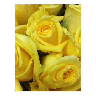 Flores del rosa amarillo postales