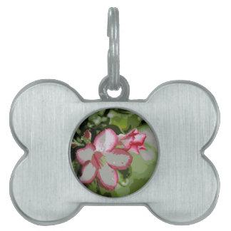 Flores del rosa de desierto en el diseño de la placas de mascota