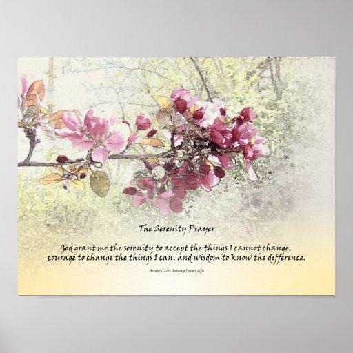 Flores del rosa del rezo de la serenidad impresiones