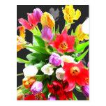 Flores del tulipán de la primavera postal
