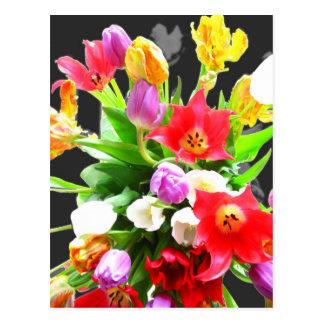 Flores del tulipán de la primavera tarjetas postales