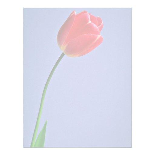 Flores del tulipán membrete