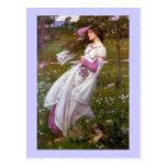 Flores del viento en el prado