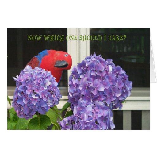 Flores del vigilante tarjeta