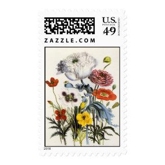 Flores del vintage, amapolas florales en el jardín franqueo
