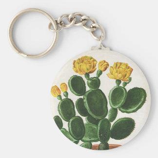Flores del vintage, cactus del cactus, planta llavero redondo tipo pin
