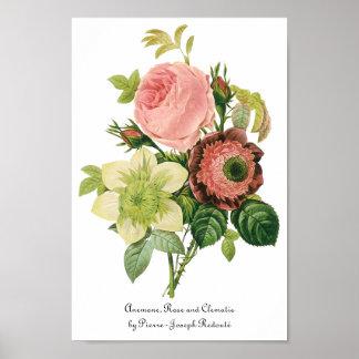 Flores del vintage, Clematis de los rosas de la an Poster