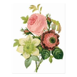 Flores del vintage Clematis de los rosas de la an