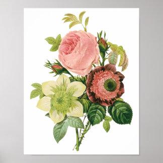 Flores del vintage, Clematis de los rosas de la Póster