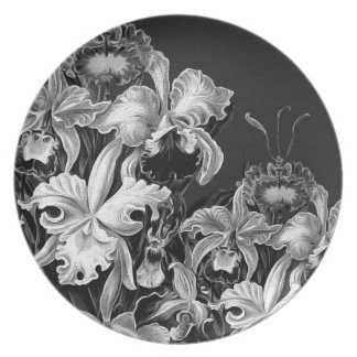 Flores del vintage de Black&White Platos