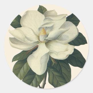 Flores del vintage, flor blanco floreciente de la etiquetas redondas