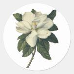 Flores del vintage, flor blanco floreciente de la pegatina redonda