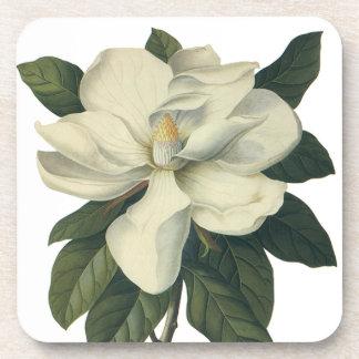 Flores del vintage, flor blanco floreciente de la  posavasos de bebidas