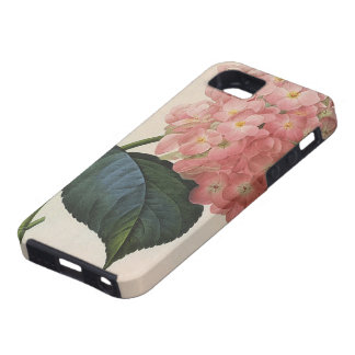 Flores del vintage jardín rosado del Hortensia de iPhone 5 Case-Mate Cárcasas