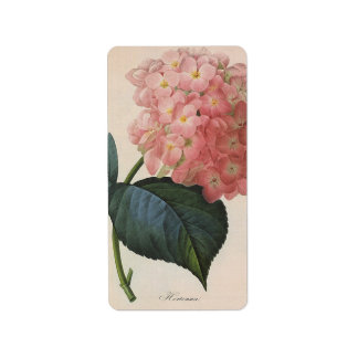 Flores del vintage, jardín rosado del Hortensia Etiquetas De Dirección