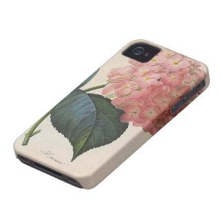 Flores del vintage, jardín rosado del Hortensia Case-Mate iPhone 4 Cárcasas