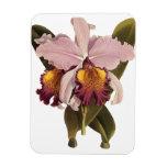 Flores del vintage, orquídea púrpura tropical de imán