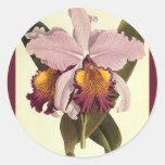 Flores del vintage, orquídea púrpura tropical de pegatina redonda