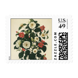 Flores del vintage, rosas florales antiguos del sello