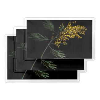 Flores del zarzo de plata bandeja rectangular