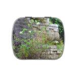 flores delante de la pared de piedra vieja jarrones de dulces