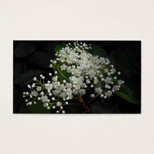 flores delicados tarjetas de visita