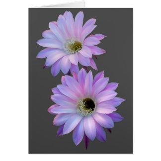 Flores dobles de Nightblooming como tarjeta