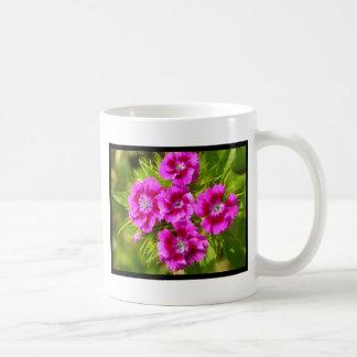 Flores dulces florecientes de Guillermo Taza De Café